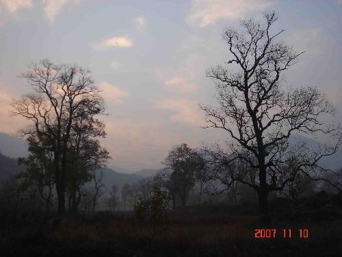 大别山国家森林公园位于罗田县北部高山区