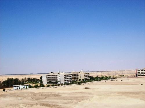 就是世界大动脉苏伊士运河-入埃及记 五 我的埃及第一天
