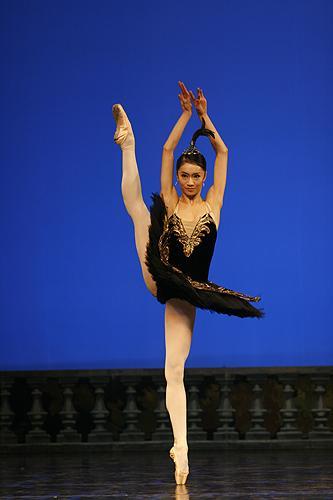 欧美芭蕾舞蹈图片头像
