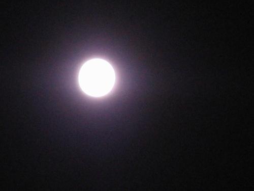 昨晚的月亮可是亮堂堂地当空照哦!