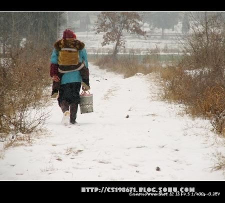一回家第二天就下起雪了图片