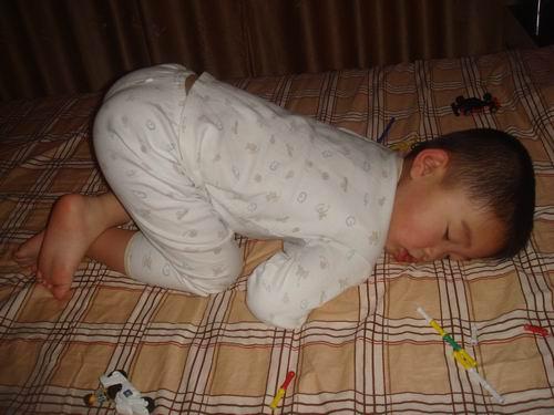 幼儿园动物睡觉画画大全图片