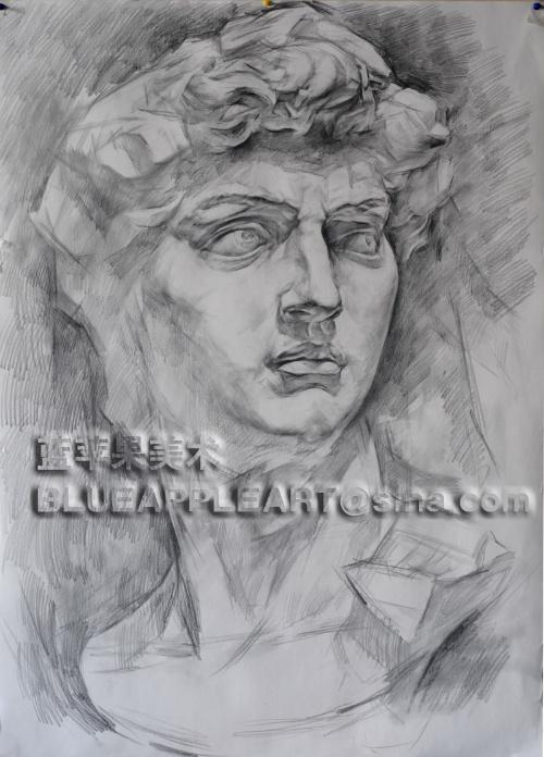 蓝苹果教师素描石膏像作品步骤展示之二(大卫)
