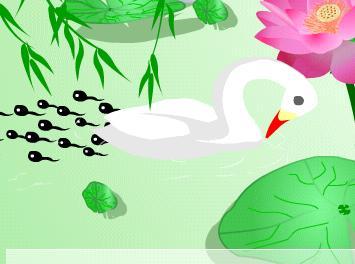 呀,游呀,游到池塘边 295x220-小蝌蚪和青蛙的资料图片图片